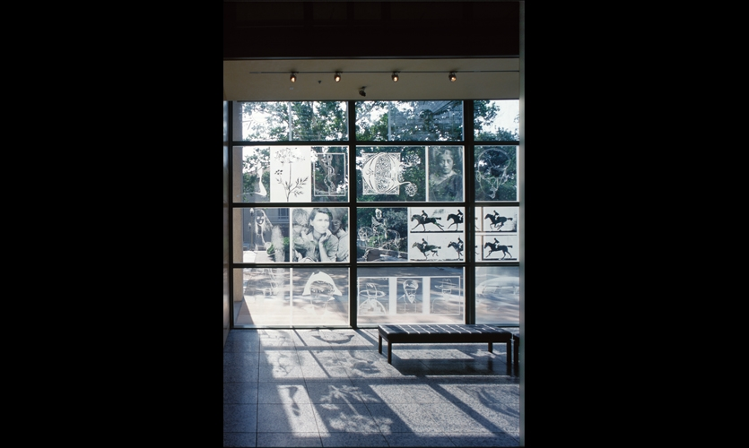 The glass panels allow natural light in during the day, projecting images onto the floor of the lobby.