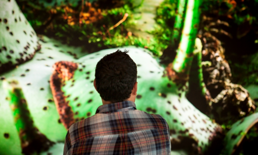 The Immersion experience includes four plant film sequences and a tour sequence totaling over 40 minutes of content.
