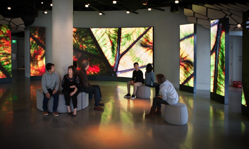 This inner circle of the exhibition is a 360-degree experience comprised of an enormous curving main LED screen and a series of 11 narrow screens that continue the canvas.