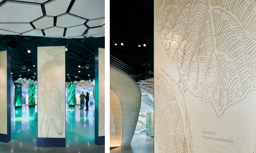 Etched panels illustrating nine iconic plants from the Spheres are featured on the reverse side of the screen towers.