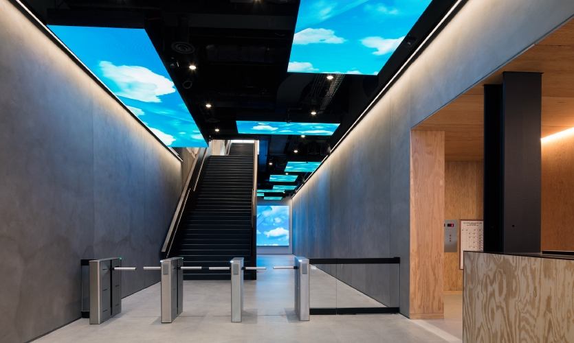 From that point of entry, the branding installations exude escalating visual energy, starting with a series of overhead monitors leading into the main workspaces playing looped animations depicting athletes in motion.