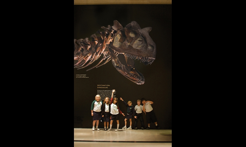"During construction of the new Age of Mammals exhibition hall, super-scaled versions of the jewel-like specimen photos were mounted to Artex Canvas polyester fabric and mounted to the plywood construction barriers. Instead of declaring ""Do Not Enter,"" they celebrated and promoted the museum's other exhibitions."