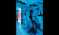 Imagery in Blue, Cristal Bar, Zenses Group, Katrin Olina Ltd.