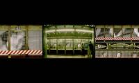 Wall Graphics, Mirages of the Walls, Pratt Institute, Piotr Adamski