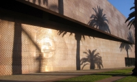 Wall Texture, de Young Museum, Fine Arts Museum of San Francisco, Debra Nichols Design