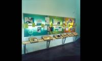 Displays, Explore Gallery, Bellevue Art Museum, West Office Exhibition Design