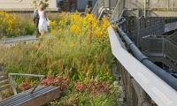 The High Line | New York, 2009–2014