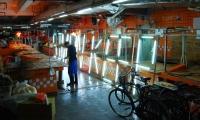 Lights in Food Prep Place, X exhibition, Shenzhen Graphic Design Association, SenseTeam