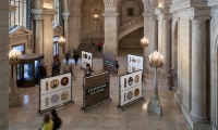 Exhibit Displays, Celebrating 100 Years, New York Public Library, Pentagram Design