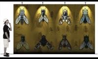 Displays, Black Flys Concept Store, Jonathan Deepe