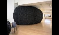 Exhibit Floor, Ecotopia, International Center of Photography, Matter Practice Architecture, MGMT. Design