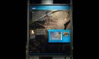 Art, Hall of Human Origins, American Museum of Natural History