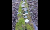 Figure 6. Sibley Regional Volcanic Preserve: Old Shack with broken plates and bottles