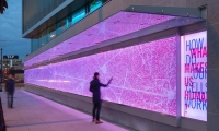 A public light installation interpreting neural activity and perception introduces the graphics program at the Allen Institute, where collaboration and connection drive research.
