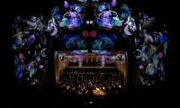 Turangalila Symphony Mapped Projection