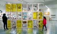 Custom made modular casework was used to define the pop-up drawing studio, display the natural history specimens, make them available to draw from and as a title wall for the space.