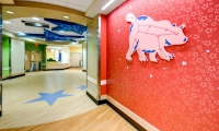 At CCHMC's Liberty Campus, murals capture constellations, each with a diagram of the constellation as well as an illustration of the animal it evokes. (Design: Kolar Design. Architecture/Interior Design: HKS Architects, GBBN Architects)