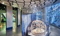 """Studio Matthews project, """"Understory at Amazon Spheres"""" (Photo credit: Ben Benschneider)"""