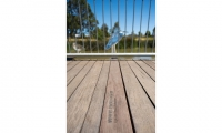 Species common and scientific names are engraved into the boardwalk for easy identification.