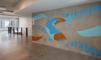 The Salmon restoration is an important story for the tsɨtpxatu (Avila) location. (image: large artwork of salmon with numeral 3)