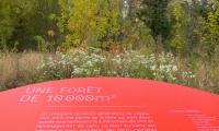 Other interpretive signs explain the park's sustainable landscape design.