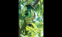 AIGA San Diego invited local artists, designers, and architects to create urban birdhouses that would attract indigenous birds back to the neighborhood.
