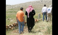The Forgotten Cities hiking trail is an 87-mile circuit of pathways linking 700 dead or forgotten cities in remote settlements west of Aleppo, Syria.