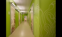 Artwork is featured in all of Seattle Children's facilities as a means to promote healing and offer calming and imaginative experiences for everyone who spends time in them.