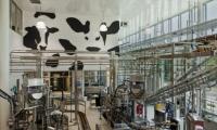 Mooooooooo. At Cornell University's Stocking Hall, Calori & Vanden-Eynden added cow spots to blank walls in a new dairy plant.