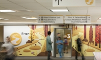 The zone murals reflect the hospital's mission of compassionate care through the pairing and interaction of the animals in healing environments.
