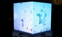Stimulant used Microsoft's Cube, a five-sided display structure, as its canvas for interactive art.