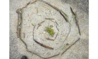 Labyrinth of sticks, leaves and stones from a Trails Carolina therapy session. (Photo Brenda Cowan)