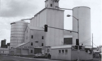 Fig. 12. Historical photo of grain siloes on SW corner of 6th and Jackson, owned by Latah County Grain Growers, 1980 (Photo: Ott)