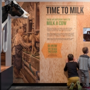 Visitors of all ages learn what life is like on a Tillamook farm by participating in interactive activities such as feeding a calf, identifying dairy breeds, or milking a cow.