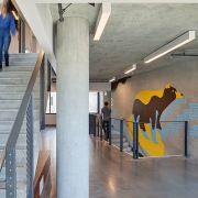 Murals stack vertically on each floor creating placemaking identity for residences. The Black bear influcenced the colors for tilhini (San Luis Obispo) building (image: stairwell with bear wall)