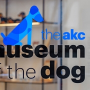 Gensler also developed a new logo, identity and guidelines for the museum—and in the tradition of MoMA and many other great museums, they created an acronym, MoD, for Museum of the Dog. (image: logo)