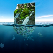 MOSS Grows Sustainable Product Portfolio with Innovative Ocean Plastic-based  Fabric Solution