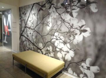 Photo of Skylline Design Showroom