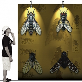 Black Flys Concept Store, Jonathan Deepe