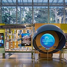 California Academy of Sciences Exhibits, California Academy of Sciences, Volume Inc., Cinnabar Inc.