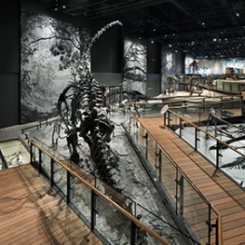 Natural History Museum of Utah, Salt Lake City, Utah