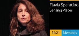 Flavia Sparacino - Transforming Business