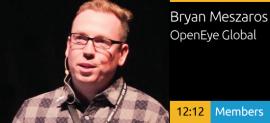 Bryan Meszaros - Transforming Business