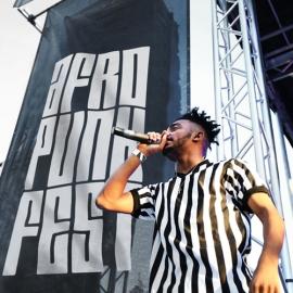 AFROPUNK Festival Rebrand