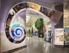 Reich&Petch completes the Smithsonian Institution's new David H. Koch Hall of Fossils – Deep Time ©Reich&Petch/Chris Payne