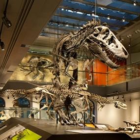Dinosaur Hall, Natural History Museum of Los Angeles County, KBDA