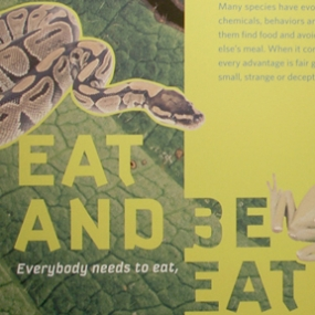 Eat and Be Eaten, Libert Science Center