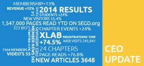 Infographic for the SEGD 2014 Q4 CEO Update