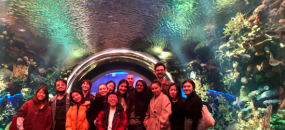Design Semester—FIT Graduate Exhibition & Experience Design at NY Aquarium