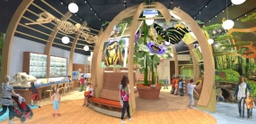 Discovery Zone by Skolnick